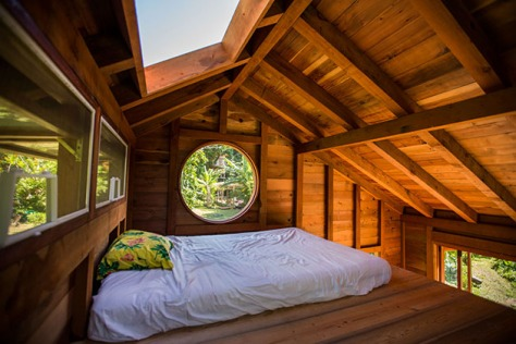 200 Square Foot House in Hawaii2