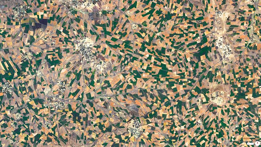 Agricultural Development, Addis Ababa, Ethiopia