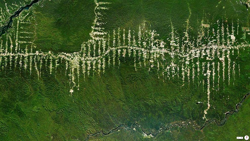 Amazon Rainforest Deforestation, Para, Brazil