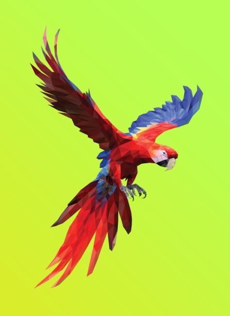 Poly Macaw by Breno Bitencourt