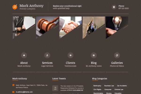 Themis - Responsive Law Business WordPress Theme (20150122)