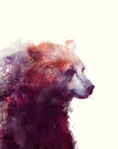 Calm Bear by Amy Hamilton