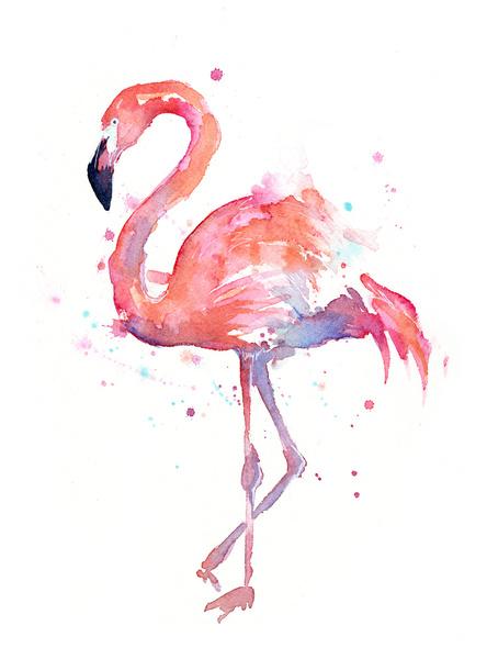Flamingo by Olechka