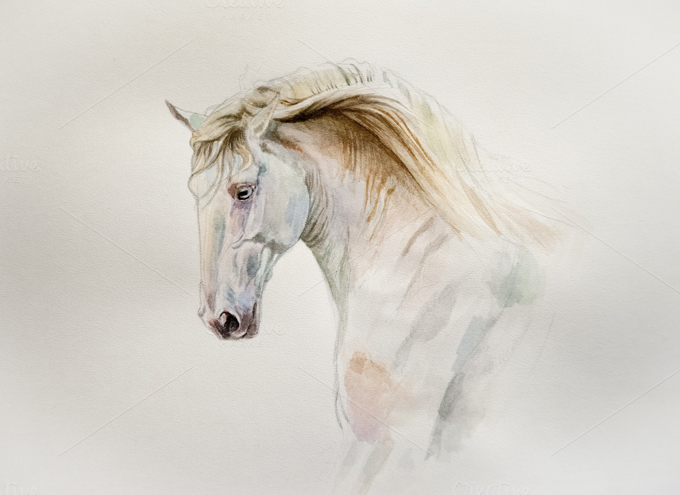 Watercolor horse by Olgait