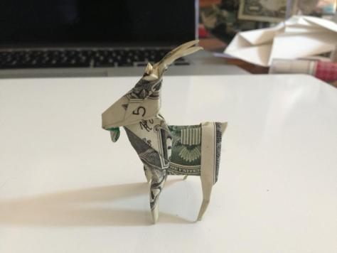Dollar Goat