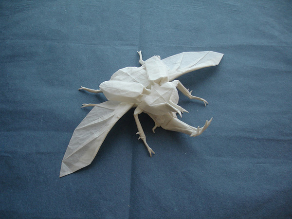 Origami Beetle by Shuki Kato