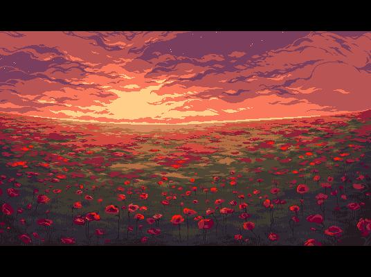 Poppy field by Tatyana Sherbul