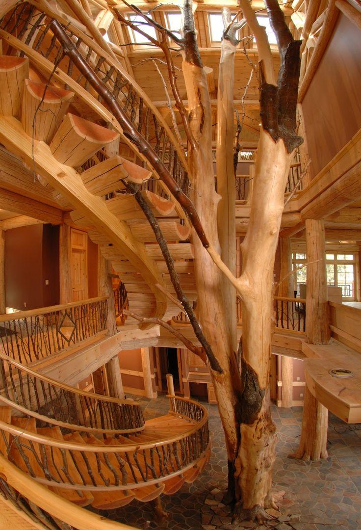Tree Stairs
