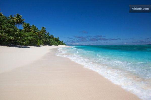 Your Own Fiji Island3